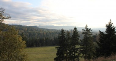 A Pacific Northwest Safari.  Northwest Trek Eatonville, Washington.
