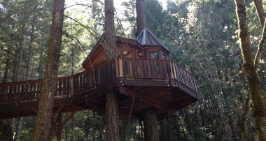 Tree House Bed and Breakfast? Yes please.