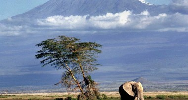 Things to know before climbing Kilimanjaro.