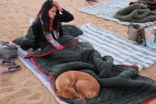 Thar desert camping safari