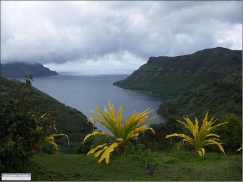 Jungle hut in Tahiti go to sea