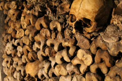 best paris catacombs tour