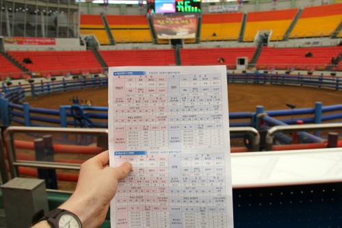 How to bet on a Korean Bullfight