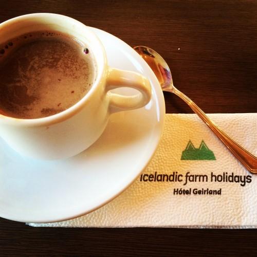 Icelandic Farm Holidays
