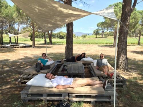 Vineyard picnic in winery in Costa Brava