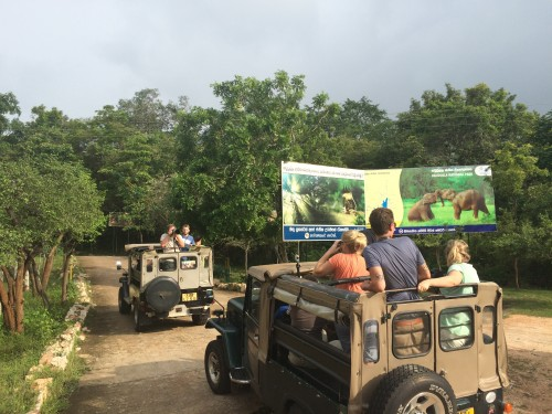 Loading up in jeeps for our Sri Lanka elephant safari