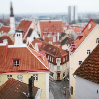 Enamored with Estonia