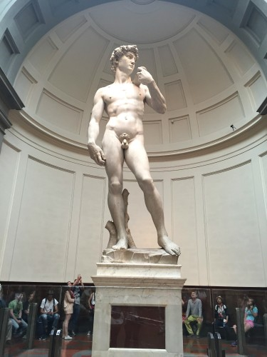 The statue of David in Firenze Italy